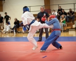 cup_world_2010_052