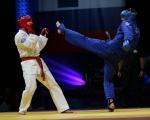 match_rus_usa_2008_019